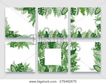 Exotic Leaves Frame. Tropical Leaf Border, Nature Summer Frames And Luxury Palm Leaves Borders Vecto