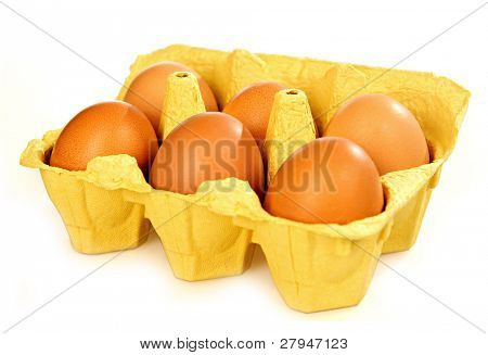 Open eggbox isolated on white background