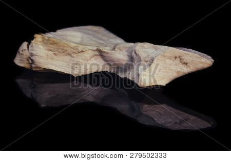 Piece Of Natural Petrified Wood With Opal On Black Background With Reflection
