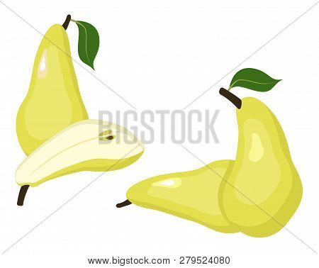 Pears Vector Illustration. Whole Pear And A Half Conference Pear Fruit On White Background.