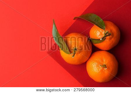 Three Ripe Bright Raw Tangerines On Branch With Green Leaves On Graphic Duotone Orange Red Crimson B