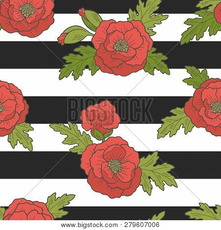 Poppy Flower Graphic Sketch Color Seamless Pattern Background Illustration Vector