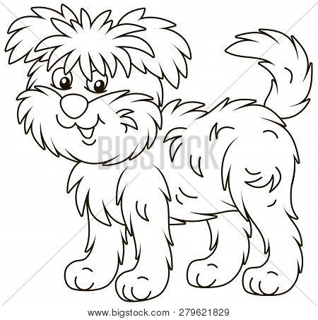 Funny And Shaggy Dog Affenpincher Friendly Smiling, Black And White Outline Vector Illustration In A