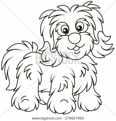Hairy Dog Images Illustrations Vectors Free