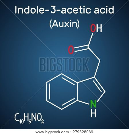 Auxin, Indole-3-acetic Acid (iaa). Structural Chemical Formula On The Dark Blue Background. Vector I