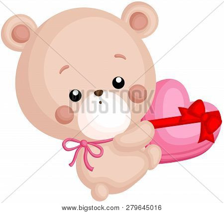 A Vector Of Cute Little Bear Holding A Chocolate Heart Box