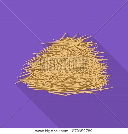 Vector Design Of Sugarcane And Cane Logo. Set Of Sugarcane And Field Stock Symbol For Web.