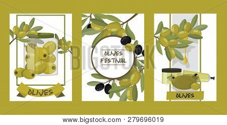 Olive Vector Oliveoil Bottle With Virgin Oil And Natural Olivaceous Ingredients For Vegetarian Food