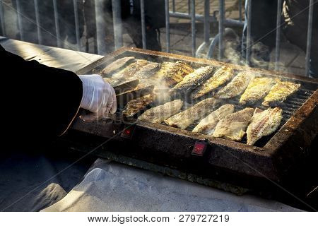Sea fish Mackerel On Grill During The Feast Of Fish In Bourgas, Bulgaria 06 December. Grilled Fish