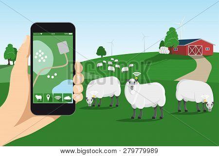 Sheep Tracking Monitoring In Smart Farm. Vector Illustration