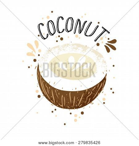 Vector Hand Draw Coconut Illustration. Brown Coconuts With Juice Splash Isolated On White Background