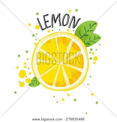 Vector Hand Draw Lemon Illustration. Half And Slice Of Lemons With Juice Splashes Isolated On White