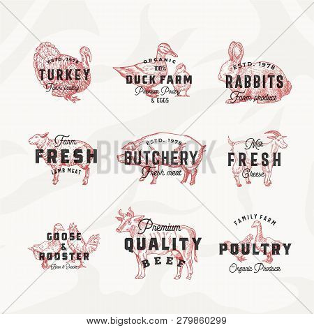 Retro Cattle And Poultry Vector Logo Templates Set. Hand Drawn Vintage Domestic Animals And Birds Sk