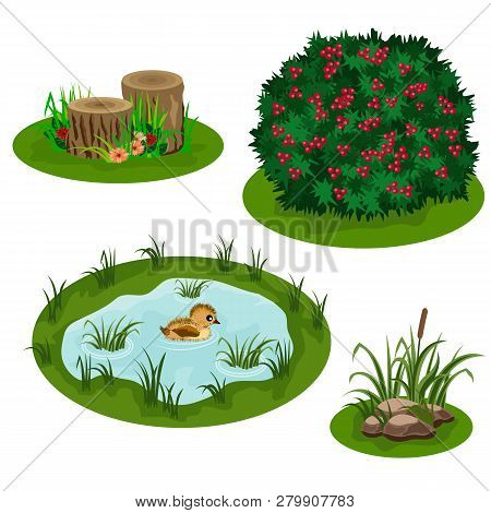 Set Of Landscape Elements For Summer Forest Or Garden Scene Design. Bush, Flowers In Grass, Pond Wit