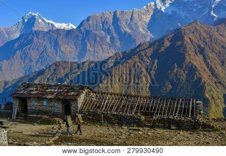 Beautiful Snow Peaks Of Annapurna Range, Nepal. Annapurna Includes One Peak Over 8,000 Metres, Thirt