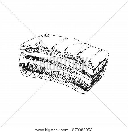 Beautiful Vector Hand Drawn Meat Products Illustration. Detailed Retro Style Brisket Image. Vintage