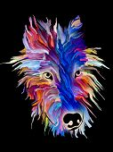 Dog portrait in bright colors on black background on subject of love, friendship, faithfulness, companionship between dog and man. God bless animals series. poster