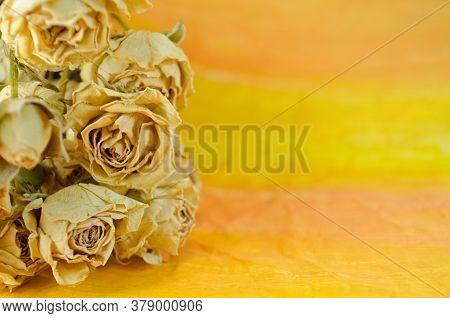 Bouquet Of Dried Roses. Dry Rose Flower On Table