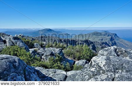 Alpine Landscape. Ancient Gray Boulders Lie On The Flat Summit Of Table Mountain. Low Shrubs, Fynbos