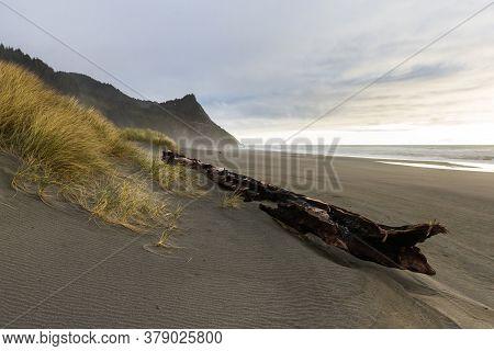 Coastal Landscape In Southern Oregon