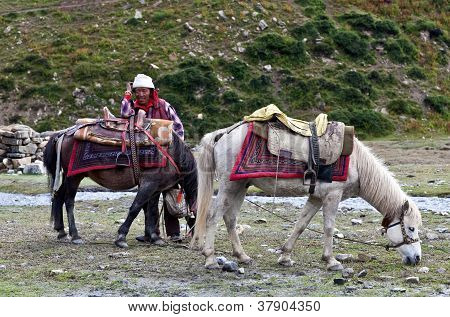 Tibetan nomad with horse