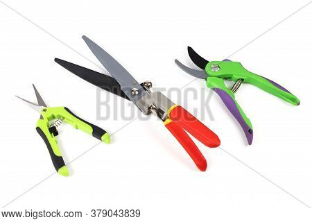 Various Types Of Garden Shears And Pruning Shears For Cutting Trees And Bushes. Isolated On Light Ba