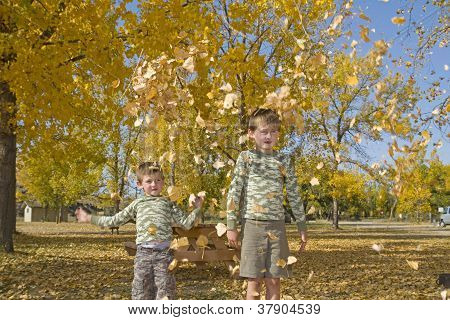 Two happy boys throw leaves