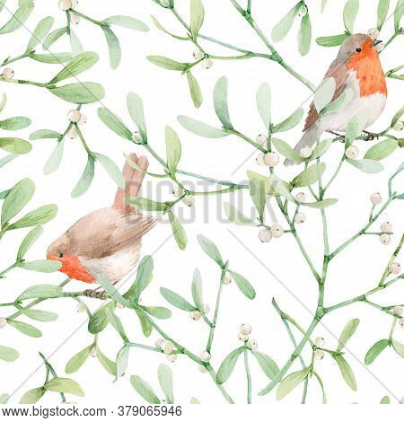 Beautiful Seamless Pattern With Watercolor Mistletoe Plant Leaves With Robin Birds. Stock Illustraqt