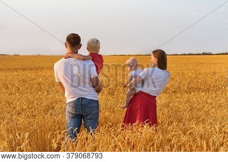 Rear View Of Father Mother And Two Children In Wheat Field. Young Family With Children Outdoors.