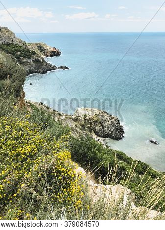 Spectacular Scenery Of Steep Slope With Trees And Turquoise Sea On Sunny Day