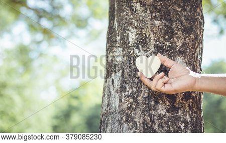 Asian Man Giving A Hug On Big Teak Tree Hug. Love Tree And Nature Or Environment Concept