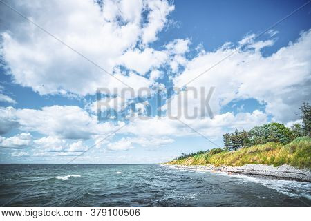 Scandinavian Shore With Green Nature On The Pebble Beach In The Summer