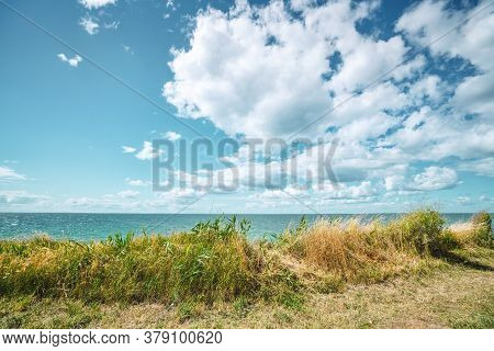Grass By The Coast With A Calm Ocean In The Summer Under A Cloudy Sky