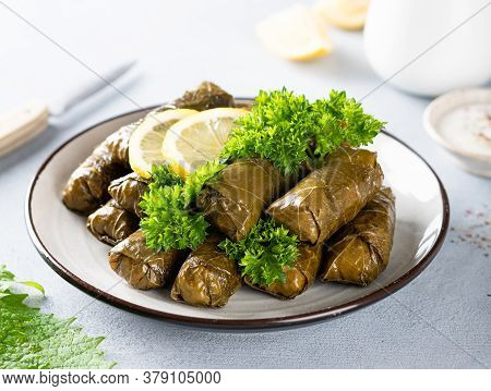 Dolma, Traditional Caucasian, Turkish And Greek Cuisine