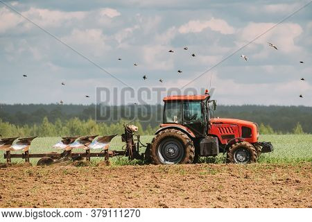 Dobrus, Belarus - May 21, 2020: Tractor Plowing Field In Spring Season. Beginning Of Agricultural Sp
