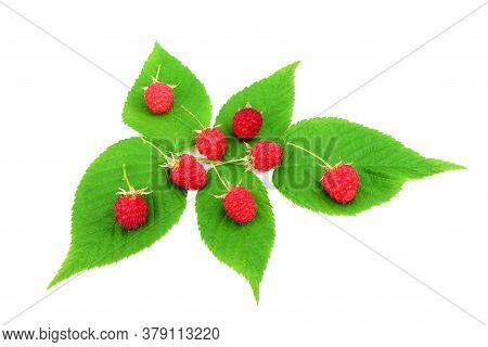 Red Ripe Raspberry With Green Leaves Isolated On A White Background. Healthy Organic Food. Harvest.