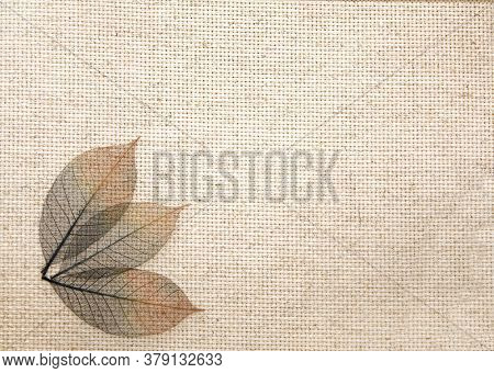 Horizontal or vertical background with leaves on canvas texture. Transparent skeleton leaves on linen mesh. Natural eco backdrop. Mock up template. Copy space for text