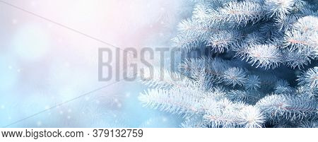Horizontal Christmas background with branch of fir tree. Holiday xmas banner with pine on abstract backdrop. Copy space for text. Photo toned in blue color