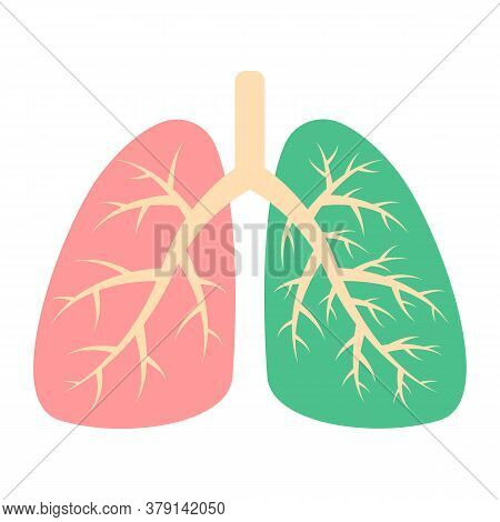 Healthy Lung And Diseased Human Lung. Respiratory System. Patient With Pneumonia, Asthma, Lung Cance
