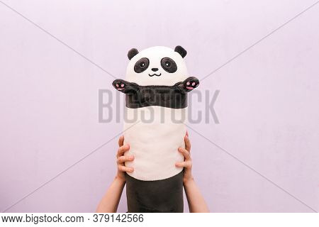 Hand Holding A Panda Doll. A Panda Toy On A Colored Background. A Pillow For Sleeping.
