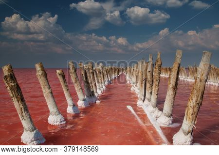 Pink Salt Lake Sasyk-sivash, Yevpatoria, Crimea. The Water Of This Lake Is Strongly Saturated With S