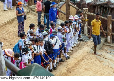 Children In School Uniforms Study Elephants In An Elephant Shelter In Pinnawala. Sri Lankan School C