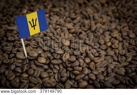 Barbados Flag Sticking In Roasted Coffee Beans. The Concept Of Export And Import Of Coffee