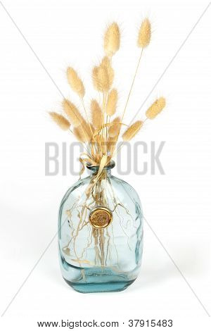 Bunny Tail Grass In A Vase