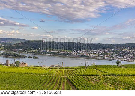 Scenic Vineyard Landscape With River Rhine View At Ruedesheim, Germany