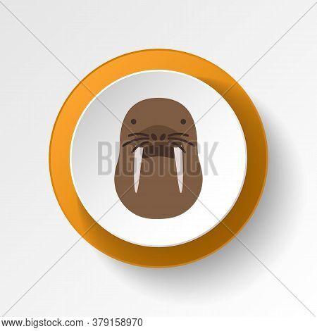 Walrus Color Icon. Elements Of Winter Wonderland Multi Colored Icons. Premium Quality Graphic Design