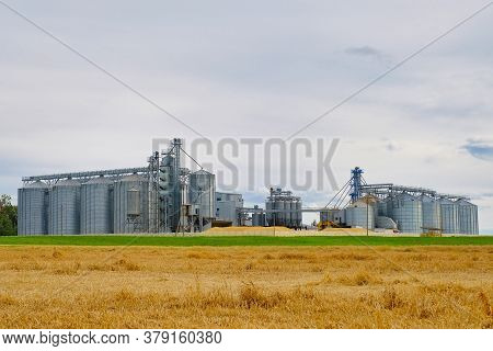 Granary Elevator. Metal Silos For Grain Storage, Drying, Cleaning Agricultural Products, Flour, Cere