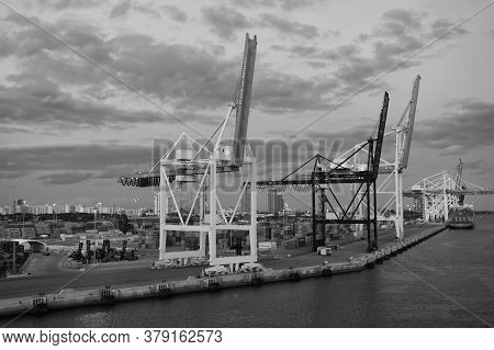 Miami, Usa - March 01, 2016: Cranes In Cargo Port On Cloudy Evening Sky. Freight Cranes In Sea Port.