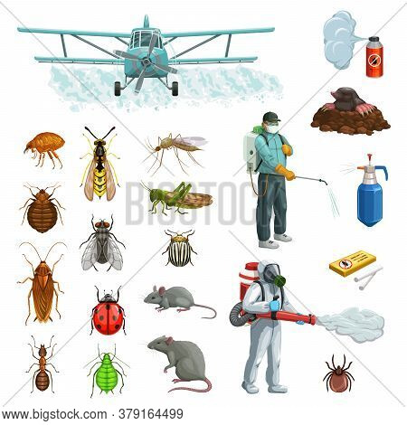 Pest Control Cartoon Vector Set With Pest Insects, Bugs And Rodent, Exterminators, Pesticide And Pla