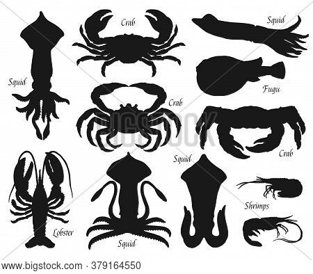 Sea Animal And Fish Black Silhouettes, Vector Seafood And Shellfish. Crabs, Squids And Lobster, Shri